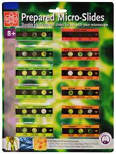 Elenco EDU-36729 12 Prepared Microscope Slides With 36 Assorted Specimens