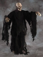 Deluxe Rotting Black Gown Robe Undead Zombie Monster Cape Cloak Adult Halloween
