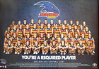 2013 ADELAIDE FOOTBALL CLUB TEAM 2013 AFL Adelaide Crows Team poster unframed