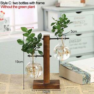 Hydroponic Plant Vase Transparent Vintage Flower Pot Wooden Frame Glass Tabletop