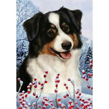 Winter House Flag - Tri Australian Shepherd 15353