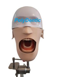 Dental Training Frasaco Compatible Typodont Manikin Simulator ORE Phantom head