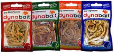 Dynabait fishing worms ( blood, tube, sand and lug/rag, fishing tackle, bait)