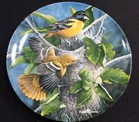 1985 Birds Of Your Garden Limited Edition Collector Plate Baltimore Oriole 1080S