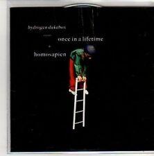(AL247) Hydrogen Dukebox, Once In A Lifetime - DJ CD