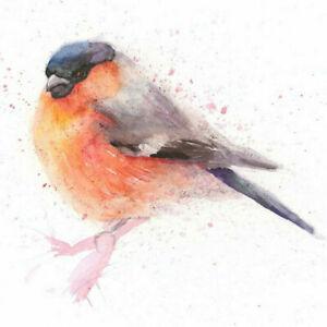 Limited Print of BULLFINCH original watercolour by HELEN APRIL ROSE   316