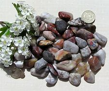 12 Stunning Crazy Lace Agate Crystal Tumblestones