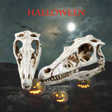 Cryolophosaurus Dinosaur Resin Fossil Skull Model Collectibles Model