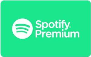 spotify premium ( 1 Monat )