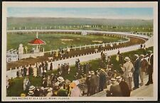 1910's DOG RACING AT HI-A LE-AH, MIAMI Florida COLOR POSTCARD Dogs on the Track