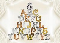 Metallic Look Large 4inch 11cm Wooden Letters Free-standing Alphabet Name Plaque