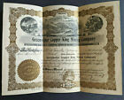 1907 Greenwater Copper King Mining Company Stock Certificate Death Valley