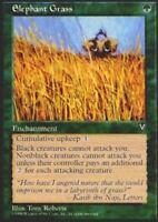 1 ELEPHANT GRASS ~mtg NM Visions Unc x1