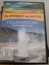Die Wunder der natur: yellowstone - faszinierende Welt der geysiere
