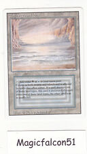 x1 carte Dual land Underground Sea REVISED ENGLISH (1994) NM MAGIC MTG ★★★★