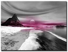 Single Total 65x45cm ART CANVAS WALL ART QUALITY PRINTS  ART  NOX Black/pink