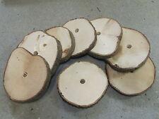 Knabberholz 8x groß Nagerholz Haselnuss trocken Meerschweinchen Kaninchen