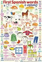 A2 Spanish Words Poster/ educational / learning / foreign language / literacy