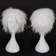 Mens Male Boys Short Fluffy Straight Wig Anime Cartoon Cosplay Party Full Wig D2