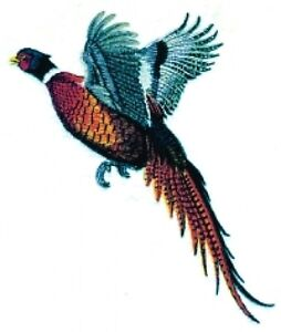 Embroidered Short-Sleeved T-Shirt - Pheasant BT2856