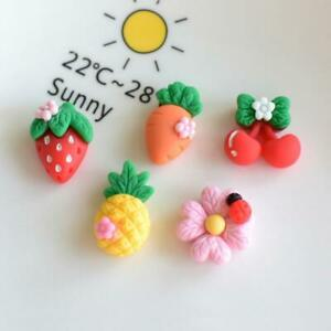 10pc Mixed Resin Cartoon Fruits & Flowers Flatback Buttons Cabochons Decorations