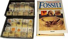 IL MAGICO MONDO dei FOSSILI 1 raccoglitore +  20 fossili DE AGOSTINI