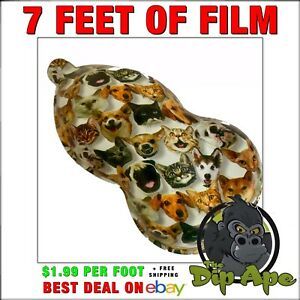 Hydrographic film CATS & DOGS furry friends 7'