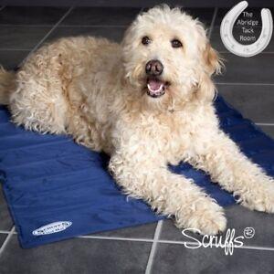 Scruffs Cool Mat – Non-Toxic – Blue –  Cooling Pet Mattress Summer Bed – 4 Sizes
