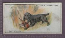 Field Spaniel Dog Canine Pet 1920s Ad Trade Card