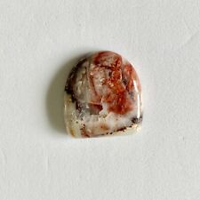 Natural Crazy Lace Agate 25 carats Cabochon GemstoneGeology Rock