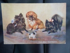"""Vintage Raphael Tuck+Sons Oilette Postcard No 3597 """"The New Playmate"""" Cute Dogs"""
