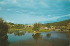 Postcard Newfoundland St John's Bowring Park Pond View from Bridge ca1950s