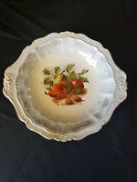 "Antique O.C.C.O Limoges Hand Painted Fruit 10"" Porcelain Bowl"