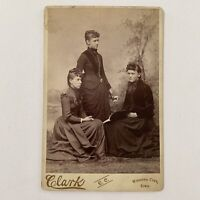 Antique Cabinet Card Photo Beautiful Young Woman Women Book Webster City IA