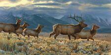 ELK WILDLIFE ART PRINT - On the Run by Kalon Baughan Wildlife Poster 52x27