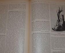 dachbodenfund 3x deutsche jäger vereins zeitung nr33/34/35 neumann heft 1923 alt