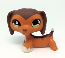 LPS Littlest Pet Shop #675 Savannah Savvy Dachshund Dog AUTHENTIC RARE QP