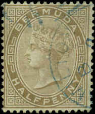 Bermuda Scott #16 Used