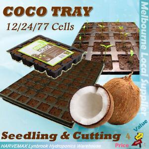 Eazy Plug COCO Tray Seedling & Cutting Hydroponics 12/24/77 Cells Cubes Seeding
