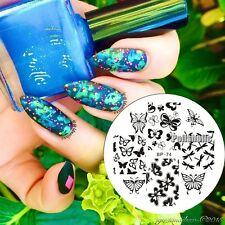 Butterfly & Dragonfly Nail Art Stamping Template Image Plate Born Pretty BP74
