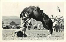 1940s RPPC Postcard Western Rodeo Cowboy Bucked off Horse, Short Stay in Nevada