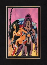 WONDER WOMAN 142 COVER PROFESSIONALLY MATTED PRINT Frame Ready DC Adam Hughes
