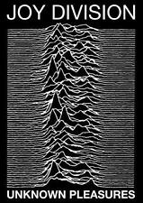 JOY DIVISION Unknown Pleasures LARGE 24 x 36 POST PUNK Ian Curtis MUSIC POSTER