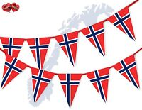 Norway Full Flag Patriotic Themed Bunting Banner 15 Triangle flags National
