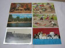 Shawano Lake Cat Mouse Kittens Kaukauna School Postcard Lot  T*