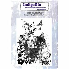 IndigoBlu Blue's Look Out A6 Red Rubber Stamp IND0175