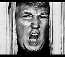 Heeere's Donny! # 10 - 8 x 10 Tee Shirt Iron On Transfer Trump