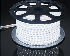 5M White 220V/110V High voltage 5050 led flexible strip light Waterproof+Plug Eu