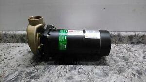 Dayton 5PXD7A 2 HP 3450 RPM 208-230/460V Pool/Spa Pump