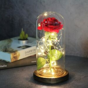 Artificial Eternal Rose LED Light - Beauty The Beast Glass Cover Valentines Gift